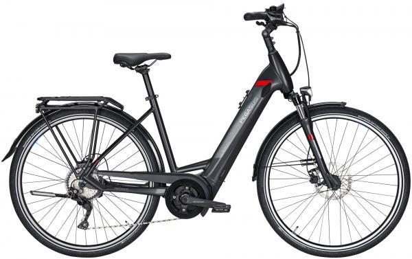 Pegasus Premio EVO 10 E-Bike Trekking