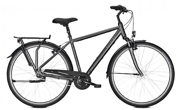 Raleigh UNICO PLUS Cityrad