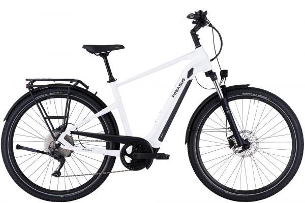 Pegasus Savino EVO 10 CX E-Mountainbike